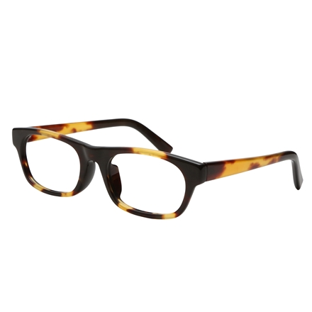 茨布オール甲メガネ